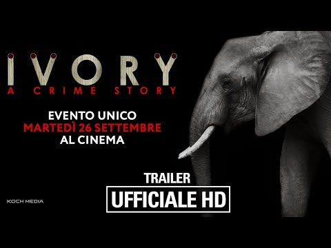 Preview Trailer Ivory. A Crime Story, trailer ufficiale