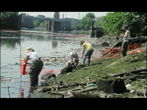 Concrete Plant Park, on the Bronx River, was transformed from a waterfront wasteland into a wonderland, thanks to the collaborative efforts of its neighbors, the Bronx River Alliance, and NYC Parks.