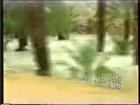 سيول حوطة بني تميم  8  1415هـ