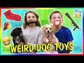 Download Lagu TESTING WEIRD DOG TOYS   We Are The Davises Mp3 Free