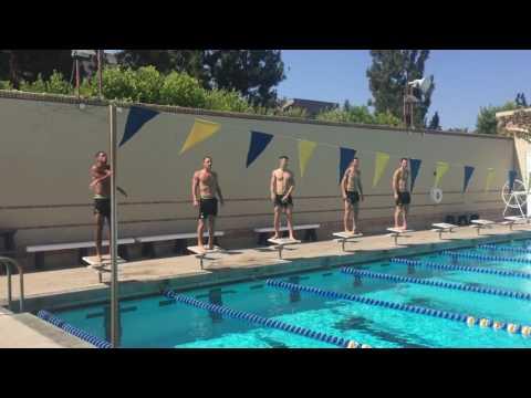 أكبرهم سناً … لكنه أفضلهم سباحةً! سباق بين نجوم البلوز في حوض السباحة (فيديو)