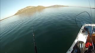 West Coast South Africa  City new picture : South Africa Fishing - West Coast - Langebaan - Fishing Boys