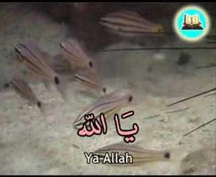 Zikir dan Doa Selepas Solat oleh Hazamin Full Version - (Ehsan Astro