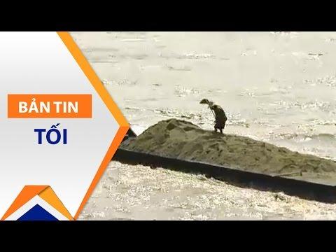 Địa phương quản lý khai thác cát để chống cát tặc | VTC - Thời lượng: 3 phút, 43 giây.