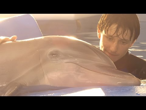 Dolphin Tale 2 Dolphin Tale 2 (Behind the Scenes 'Look Who's Running the Show')