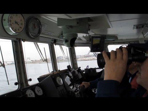 シンコ漁でにぎわう明石海峡 視察に記者が同行