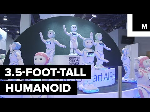 Ipal sociale robot