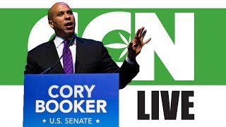 Cannabis Culture News LIVE: Justin Trudeau Should Listen To Cory Booker by Pot TV