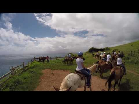 Horseback Riding on Maui