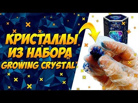 Вырастили Кристаллы из Набора GROWING CRYSTAL GRK 01 видео