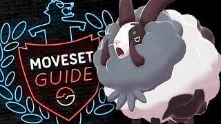 How to use DUBWOOL! Dubwool Moveset Guide! Pokemon Sword and Shield! ⚔️🛡️ by PokeaimMD