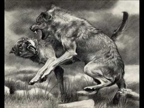The Wolves-Bon Iver (with Lyrics)