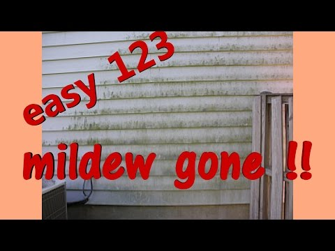 REMOVE mold & mildew growing on house or deck