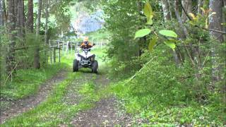 7. Can-Am Renegade 500 2011  Bombadier/BRP