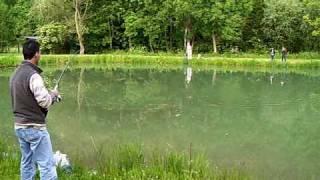 Saint-Aubin-sur-Scie France  City pictures : pêche a la truite a saint-aubin-sur-Scie