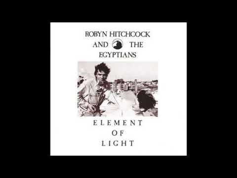 The Leopard - Robyn Hitchcock and The Egyptians