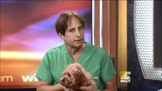 Dr. Kim Hammond Answers Questions About Cat Behavioral Problems and Flea and Tick Season