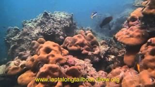 Snorkeling Trip By Longtail Boat At Koh Lanta, Thailand