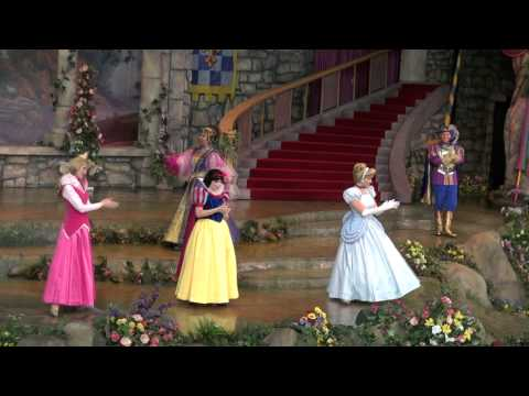 Disney's princess ball