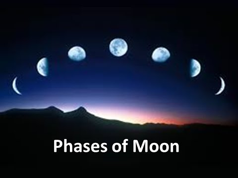 Moon Phases Worksheets Elementary