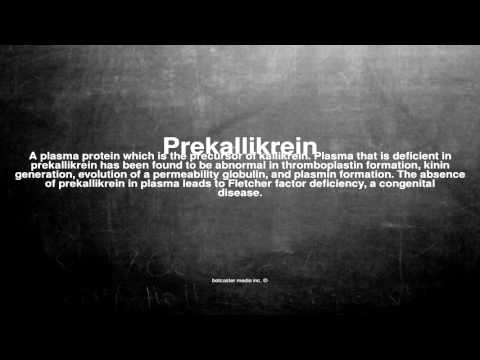 Medical vocabulary: What does Prekallikrein mean