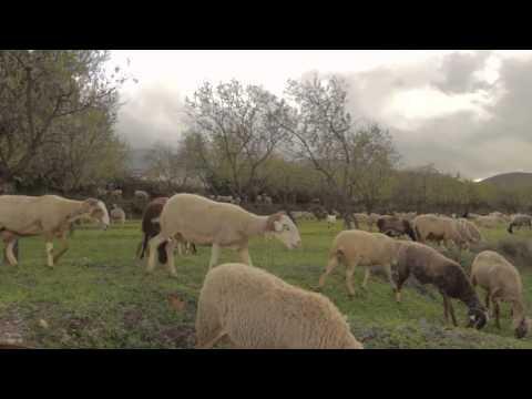 Alpujarra Paisaje Cultural