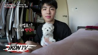 Video iKON - '자체제작 iKON TV' EP.7-1 MP3, 3GP, MP4, WEBM, AVI, FLV Juni 2019