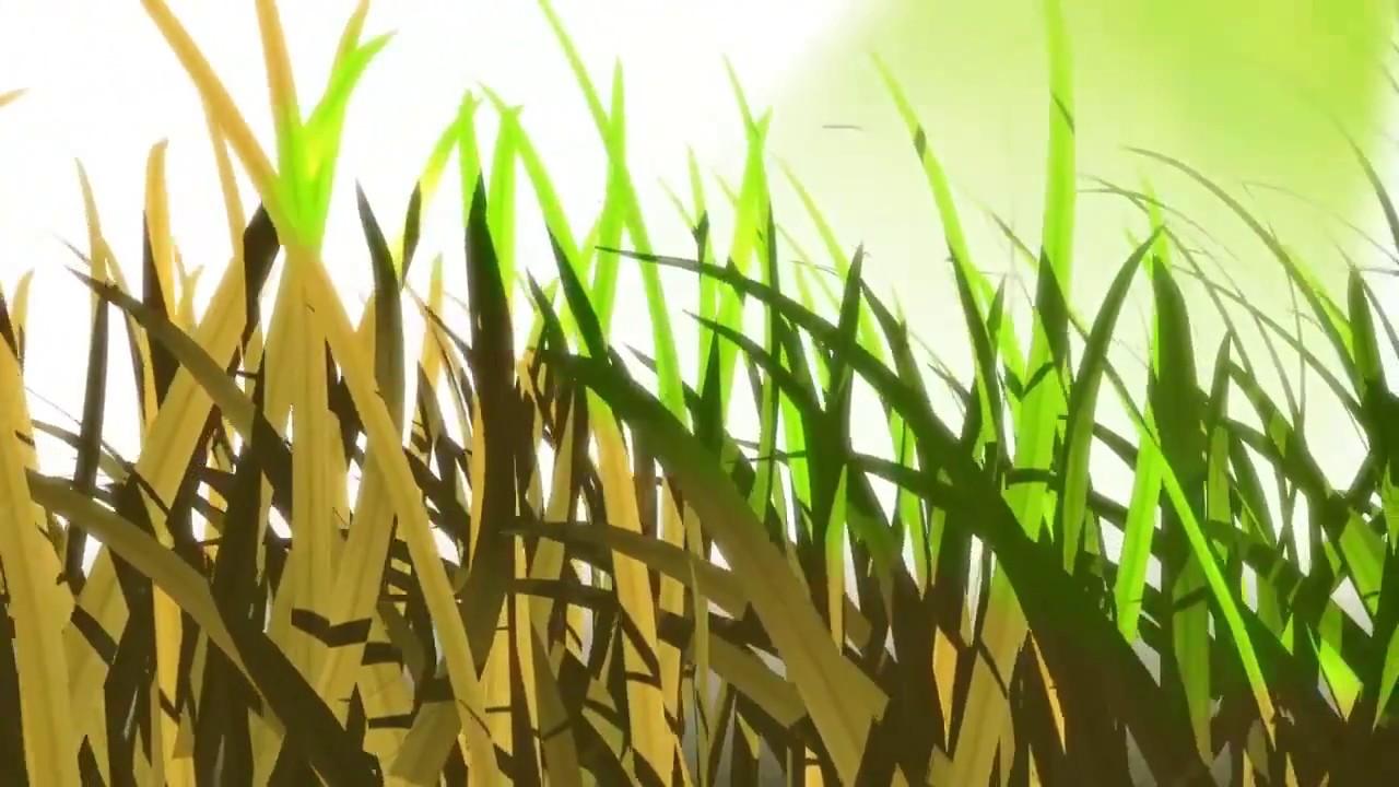 ירוק בטבע