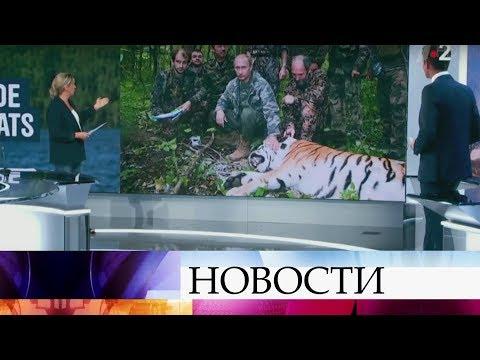 Французский телеканал признал что исказил факты в сюжете про Владимира Путина и тигров. - DomaVideo.Ru