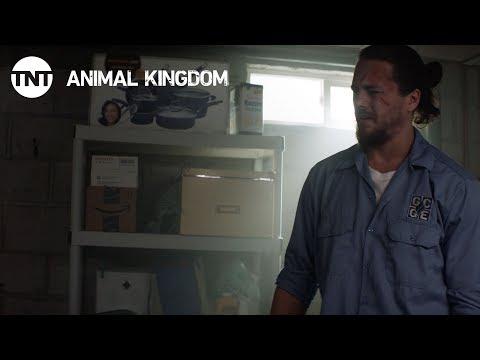 Animal Kingdom: X Marks the Spot - Season 2, Ep. 7 [CLIP] | TNT