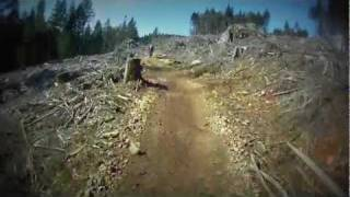 10. 2004 KTM 300 EXC in clearcut