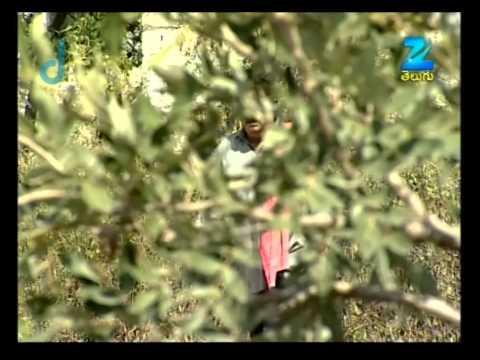Gorantha Deepam - Episode 511 - Best Scene