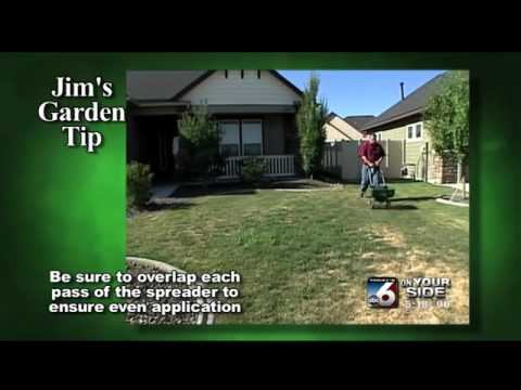 Jim's Garden Tip - Insect Control and Lawn Fertilizer