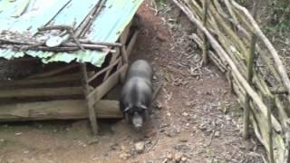 2013 Laos Trip
