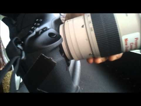 Canon EOS 1D X   14 Frames Per Second Is Blazingly Fast! | Video
