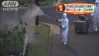 デング熱 男女3人は代々木公園の蚊から感染か(ニュース)