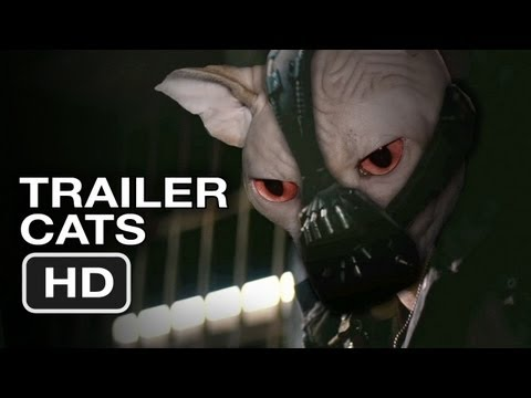 The Dark Knight Rises (With Cats)