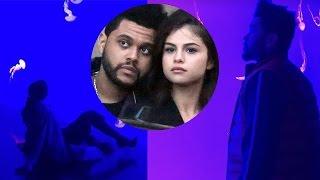 Selena Gomez and the Weeknd's SUPER Romantic Aquarium Date! 😍