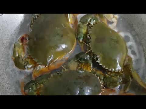 Cách luộc cua biển thịt cua ngon ngọt và đẹp mắt - Thời lượng: 10:49.