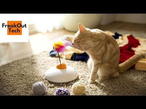 5 Incredible Inventions For Your Cat #10 ✔