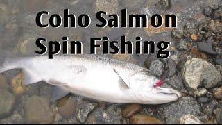 Coho Salmon Spin Fishing