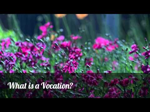 Vocation Vignettes