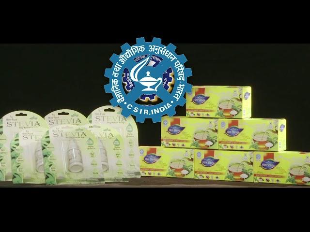 Stevia Cultivation Technology CSIR IHBT Palampur