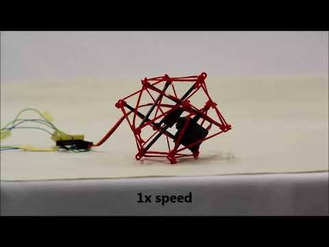 Bio inspired Tensegrity Soft Modular Robots