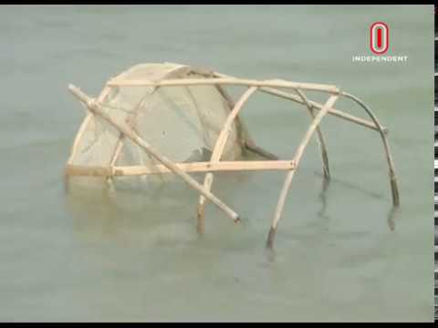 Padma bank protection project begins in Shariatpur (12-12-2018) Courtesy: Independent TV