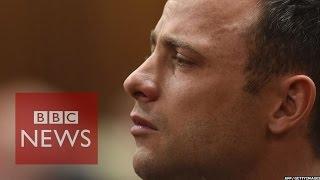 Oscar Pistorius Verdict: Reeva Killing 'not Murder'