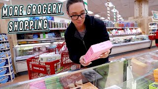 trader joes grocery shopping cause im an adult... vlogmas day 10 by Alisha Marie Vlogs