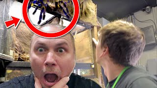 DANGEROUS TARANTULA IS LOOSE IN MY REPTILE ZOO!!   BRIAN BARCZYK by Brian Barczyk