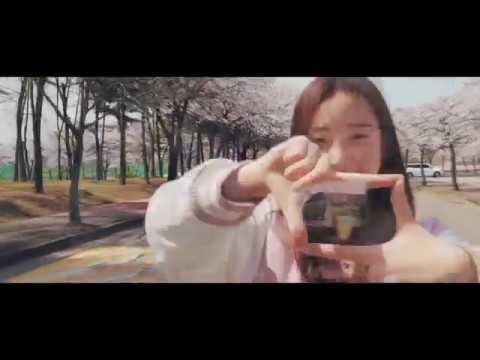 2019 한양대학교 ERICA 봄(feat. 벚꽃)