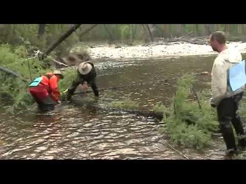 рыболовные приключения в сибири видео